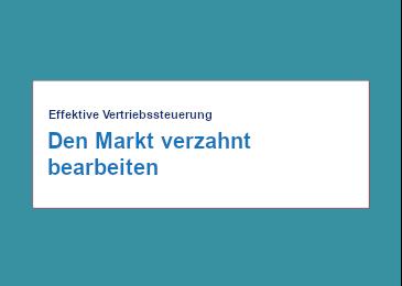 Mercuri Artikel - Effektive Vertriebssteuerung - Den Markt verzahnt bearbeiten