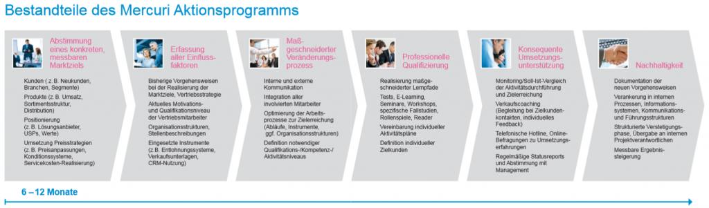 Grafik Bestandteile des Mercuri Aktionsprogramms