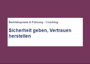 mercuri_artikel_-_sicherheit_geben-vertrauenherstellen_cover-2